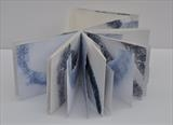 Evolution in Blue Seas by Estella Scholes, Artist Book