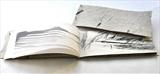 Flown On....... by Estella Scholes, Artist Book, Mixed
