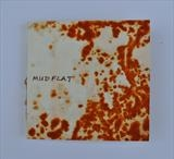 Mudflat by Estella Scholes, Artist Book