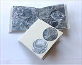 Unravellings by Estella Scholes, Artist Book, Mixed