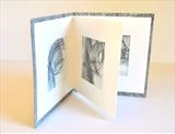 Winter Pool by Estella Scholes, Artist Book